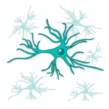 astrocyte - antibodies-online.com